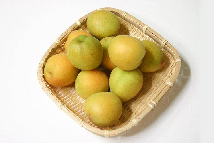 Ume/Apricots