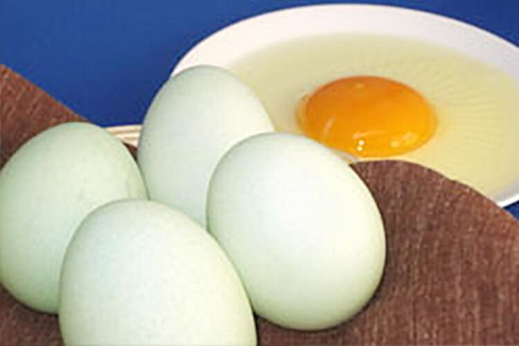 Asunaro Eggs