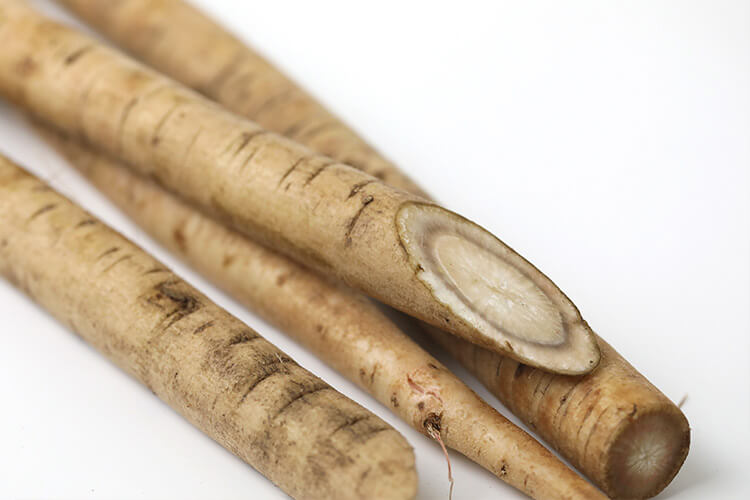 Gobo (Burdock Root)