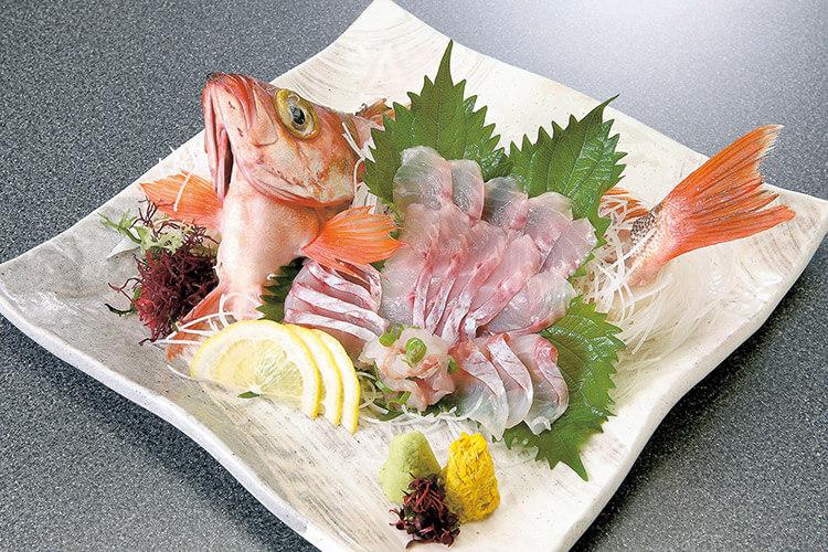Tsugaru Strait Goldeye Rockfish sashimi