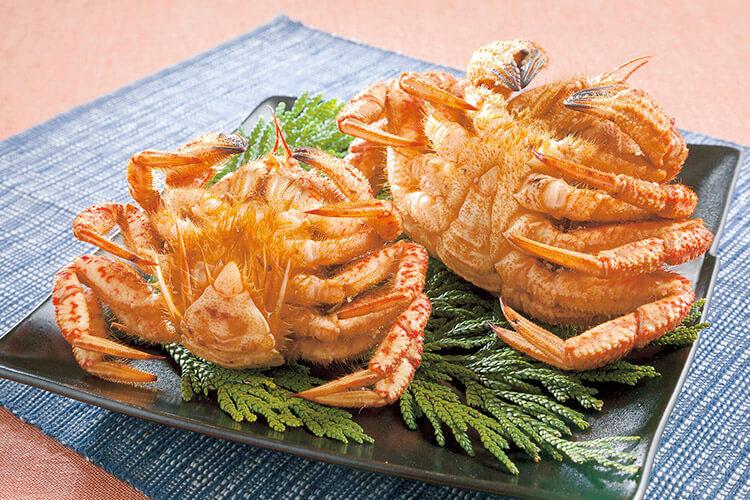 Helmet crab, togekuri-gani