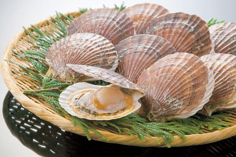 Sea Scallops